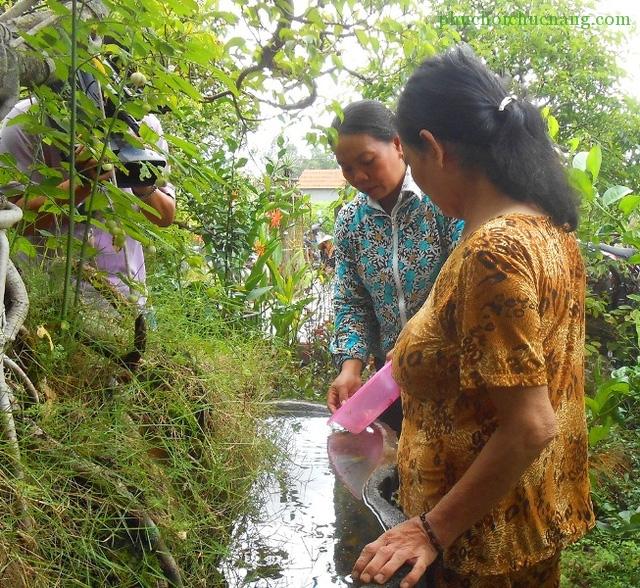 Các địa phương trên địa bàn tỉnh Bình Định đang tăng cường diệt bò gậy ngăn chặn sự lây lan của dịch sốt xuất huyết