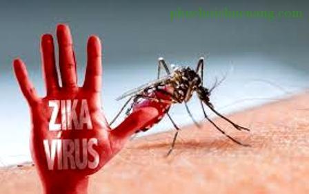Vi rút Zika đã được ghi nhận tại 19 quận huyện trên địa bàn thành phố
